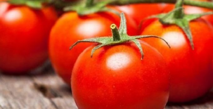 Come fare la conserva di pomodoro